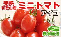 完熟ミニトマト(アイコ)約2kg トマト農家直送【和歌山県産】
