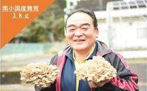 【熊本県阿蘇・南小国産】うまみ&栄養が自慢♪の生まいたけ1kg(約3株)
