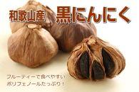 ★品切れ★【和歌山産】熟成黒にんにく 600g