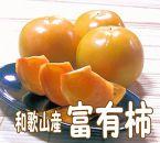 富有柿 5kg(柿の生産量日本一の和歌山から)