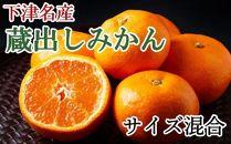 【産直】下津蔵出しみかん約5kg(サイズ混合)