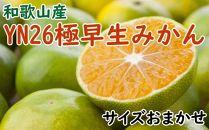 【産直】YN26極早生みかん約5kg(2S~Mサイズおまかせ)