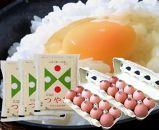 BG08【山形の卵かけごはんセット】「つや姫」(2kg×3)とこだわり卵「紅輝卵」(10ヶ×2)のセット