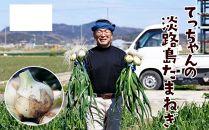 てっちゃんの淡路島新たまねぎ10kg/メディアに引っ張りだこの農家さんが育てたあまーい新たまねぎ!