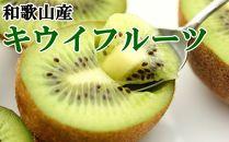 【和歌山県産】キウイフルーツ約3.6kg(サイズおまかせ)・秀品
