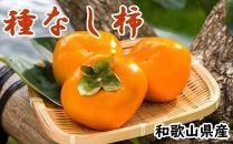【2020年9月中旬以降発送】【秋の味覚】和歌山産の平たねなし柿約3.6kg(サイズおまかせ)・秀品