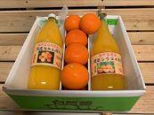 自然塾 みかん山より季節の詰合せ(果汁100%ジュース)