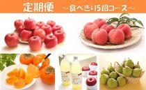 AP82【定期便】【山形県産】秋冬人気フルーツ食べ切りセット【年5回コース】【2020年度発送】