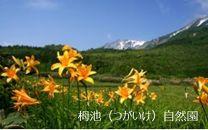 【栂池・白馬】JTBふるさと納税旅行クーポン(3,000円分)