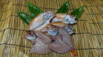 高級魚・のどぐろ干物(5尾)
