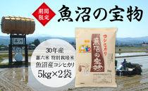 魚沼の宝物 30年産嘉六米特別栽培米魚沼産コシヒカリ5㎏×2袋