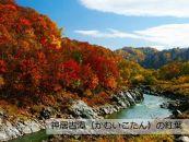 【旭山動物園のある街旭川へ】JTBふるさと納税旅行クーポン(3,000円分)