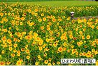 【宮島】JTBふるさと納税旅行クーポン(150,000円分)