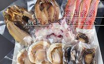 刺身で食べられるアワビ付き!海鮮バーべーキューセット<福士水産>