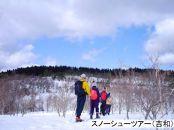 【廿日市市】JTBふるぽWEB旅行クーポン(30,000円分)