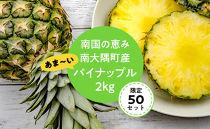 【限定50】南国の恵み南大隅町産あま~いパイナップル2kg