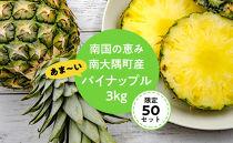 【限定50】南国の恵み南大隅町産あま~いパイナップル3kg