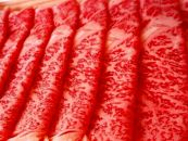 BM123肉の笹原の山形牛A5ランクロースすきやき用1kg