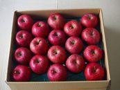 BM160松伸フルーツのりんごサンふじ10kg(26から36玉)中玉サイズ