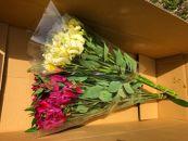 BM184佐藤庄右衛門の花束『アルストロメリア』2色20本紫・白