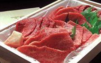 大田原牛 極上霜降り肉と濃厚赤身肉のお任せ焼肉詰め合わせ(500g)