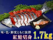 <限定>味・色・鮮度ともに抜群。旨い!紅鮭切身1.7kg!
