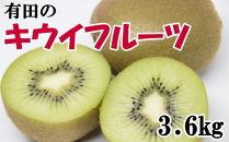 【人気】有田産キウイフルーツ約3.6kg(サイズおまかせ)