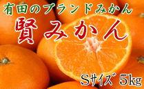 有田のブランドみかん「賢みかん」5kg(Sサイズ・赤秀品)