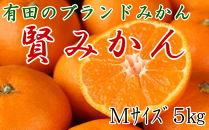 有田のブランドみかん「賢みかん」5kg(Mサイズ・赤秀品)