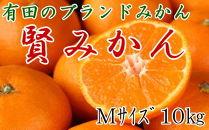 有田のブランドみかん「賢みかん」10kg(Mサイズ・赤秀品)