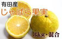 【厳選】有田産のじゃばら果実約3kg
