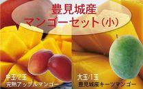 【2020年発送】豊見城産マンゴーセット(小)