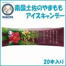 南国土佐のやまももアイスキャンデー 20本入/久保田食品/サイズ3/アイス/添加物不使用