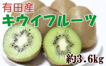 ■有田でとれた完熟キウイフルーツ約3.6kg(M~3Lサイズおまかせ)【2021年1月以降発送】