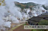 【ポイント交換専用】小国町JALふるさとクーポン27000&ふるさと納税宿泊クーポン3000