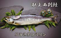 別海より日本一美味な【献上西別鮭】をお届け!献上造り(L)<別海漁業協同組合>