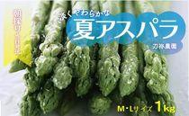 刀祢農園 朝採り当日発送「淡く柔らかな夏アスパラ」M~Lサイズ 1kg