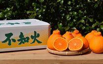 ■和歌山県産有田の不知火約6kg【まごころ手選別】[2021年2月~発送]