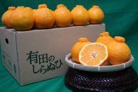 ■和歌山県産 有田の不知火 約6kg【家庭用】