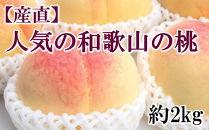 【産直・人気の特産品】和歌山の桃 約2kg・秀選品【2020年度発送】