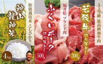【定期便2回】若狭牛A5ランク&福井ポーク&特別栽培米4㎏
