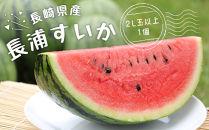 甘くて、シャリシャリ♪長浦すいか「まつりばやし」1個(2L玉以上)長崎県産