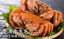 【数量限定】豊浦産生毛ガニ