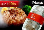 ◆【5個入】近江牛ハンバーグ