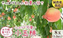 南島原の特別栽培小玉ハウス桃(Mサイズ:4パック) ※2020年5月中旬頃~2020年6月中旬頃発送(予定)