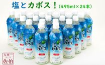塩とカボス!大分県産かぼすを使用!さっぱり爽やかで熱中症対策にも最適です!