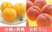 数量限定!どちらも食べたい「白桃&黄桃食べくらべセット」5kg