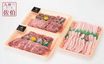 大分県の恵みいっぱい!牛肉と豚肉のコンビセット 1.1㎏