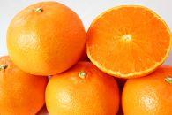 とろける食感!ジューシー柑橘 せとか 約3kg