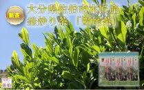 【新茶】釜炒り茶「因尾茶」